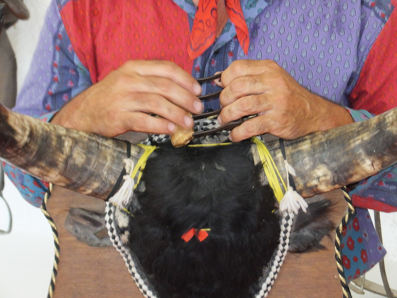 The goal of the Camargue matador, or razeteur, is to pluck a ribbon from between the bull's horns. The bulls aren't killed or injured.