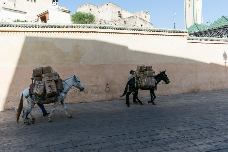 This is the mode of transport to gets good into the medina which is on the other side of the wall.
