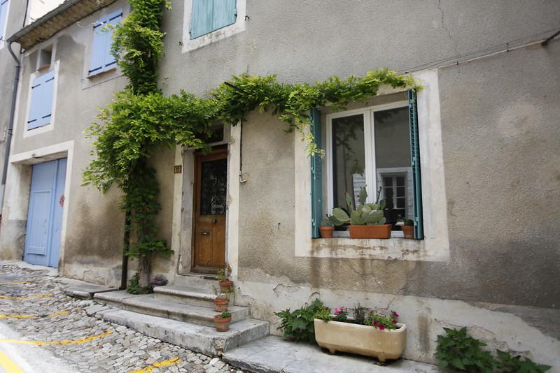 Vines and cacti in Vinsobres, France.