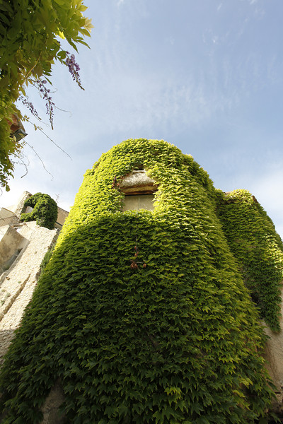 Fortified ivy tower.