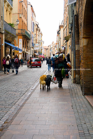Toulouse street scene