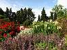 Provencal Garden
