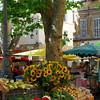 Aix 2009 (32)