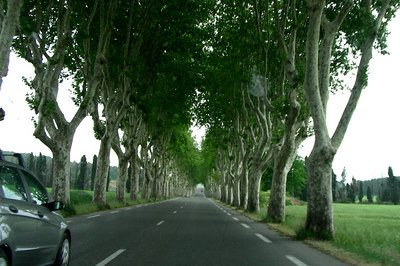 Road near Aix-en-Provence