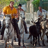 (L'encierro : Bulls run freely in the main street but all the other streets are blocked off)