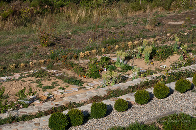 Vegetable garden at Can Rigall
