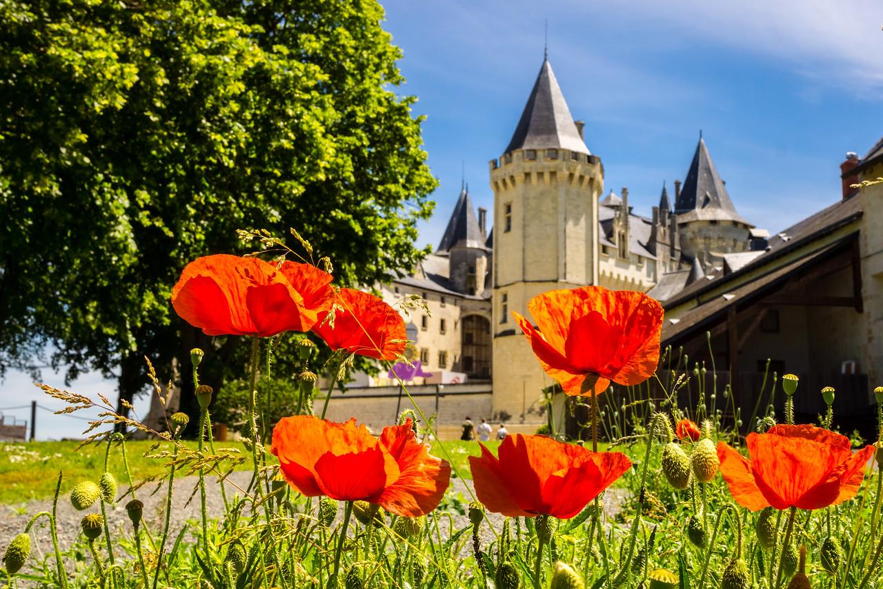 Chateau de Saumur, Saumur, Loire Valley, France, Europe