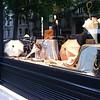 pretty store window on Boulevard Saint Germain, Paris