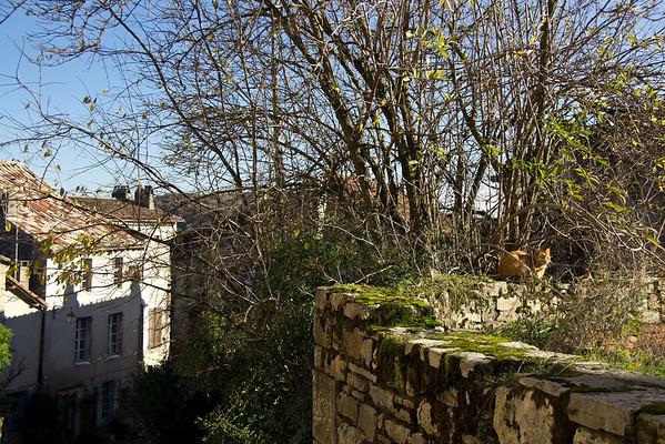 07 Cordes-sur-Ciel 11-12-2011