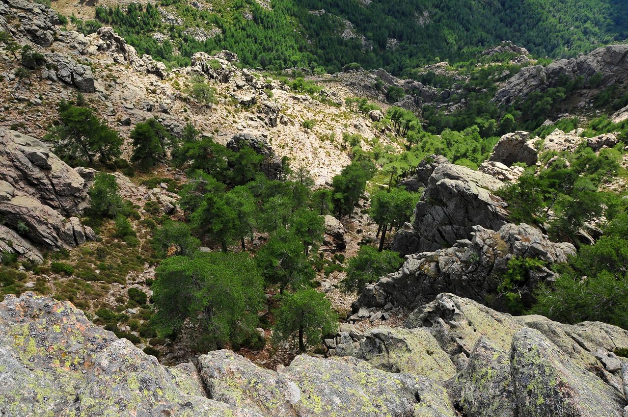 Climbing at Bavella