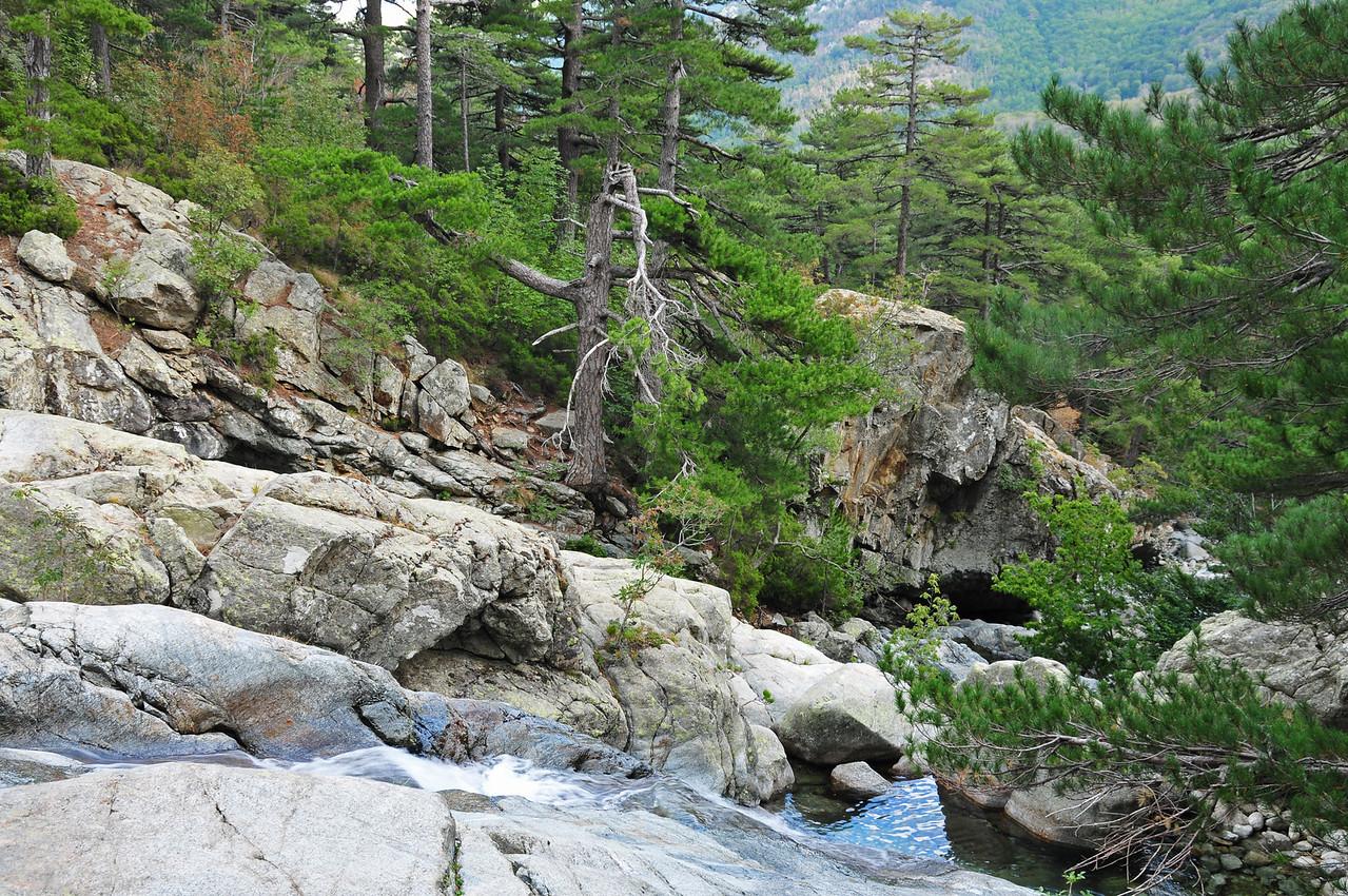 Cascades des Anglais near Vizzavona