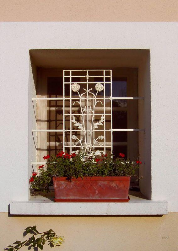 Window Box in Provence