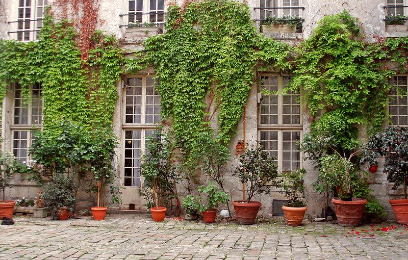 Paris Courtyard #3