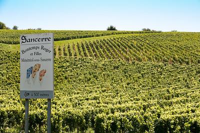 A Typical Sancerre Vineyard