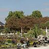 Jardin du Luxembourg<br /> Four  Landscape images Taken with Canon G10 Original image 13713X3709