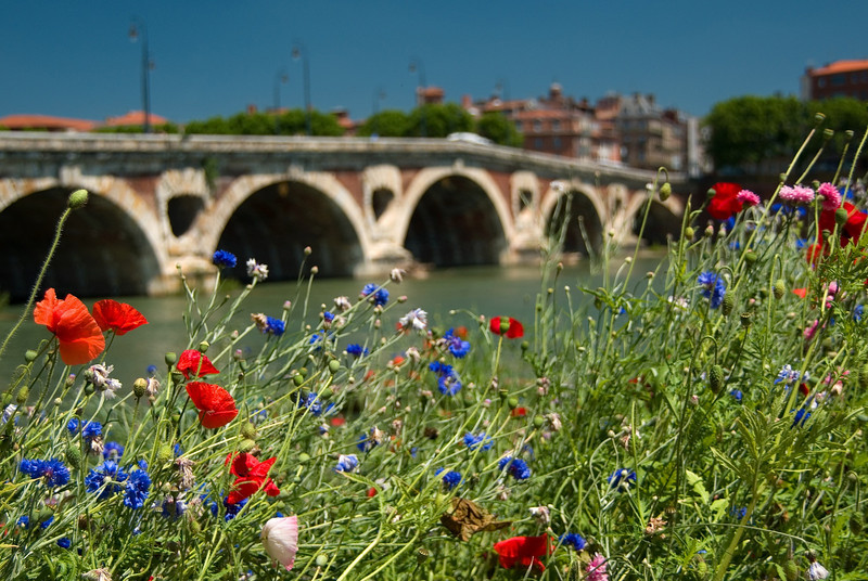 France - Toulouse - Summer