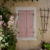 Hollyhocks and Window