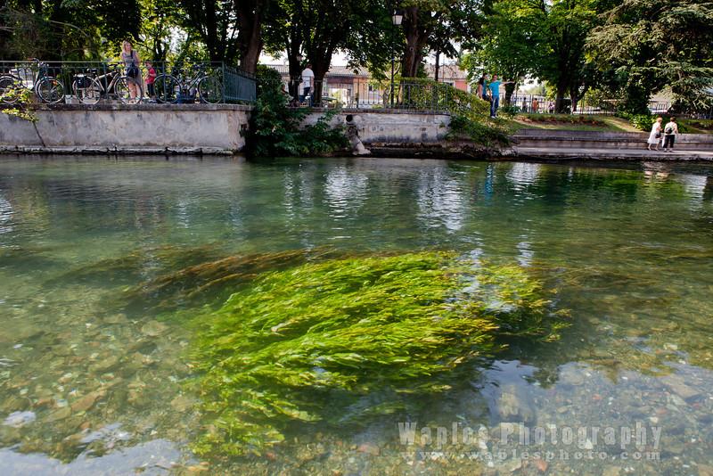 River, L'Isle-sur-la-Sorgue