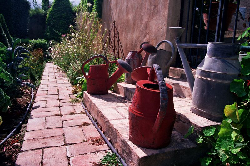 Watering Cans #1