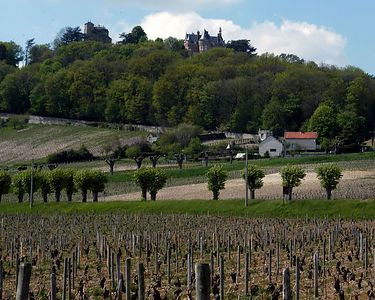 Village of Sancerre, famous for its wine and goat cheese known as ¨Crottin de Chavignol¨.