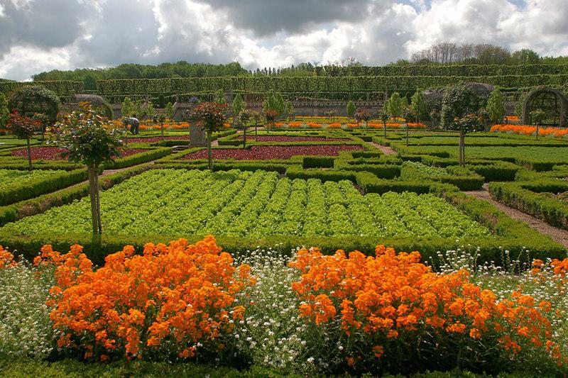 Gardens at Villandry #7