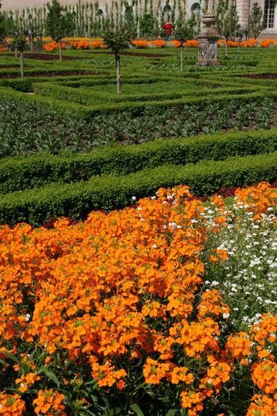 Villandry Gardens #6