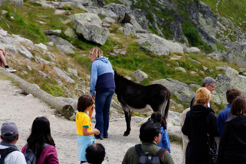 Mont Blanc - France - 4237
