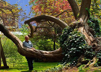 Spring in Luxemberg Gardens