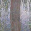 Monet Water Lillies 2009-09-16_15-40-37
