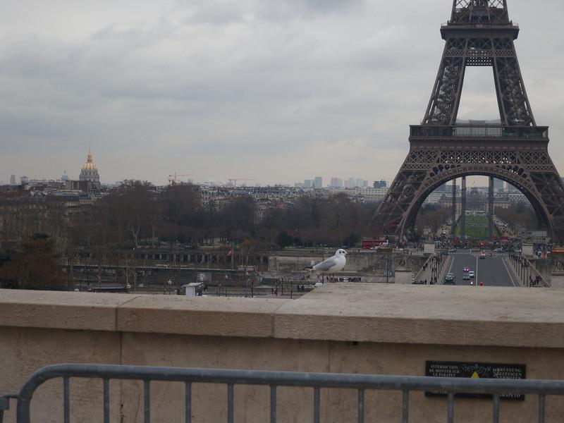 Invalides & Tour Eiffel<br /> Paris - 2013-01-11 at 14-56-00