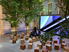 The Garden at Apple Champs Elysee