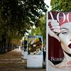 Vogue I