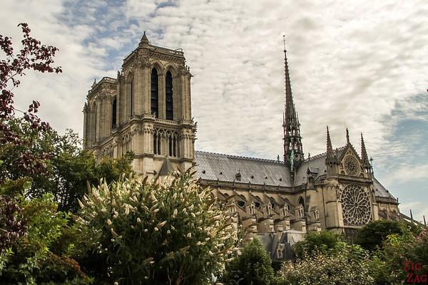 Best spot to photograph Notre Dame from: Square René Viviani, Paris