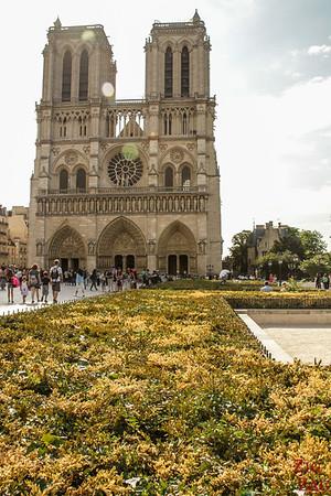 Best spot to photograph Notre Dame from: Parvis Notre Dame, Paris 3
