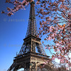 Eiffel Tower, Paris<br /> <br /> France