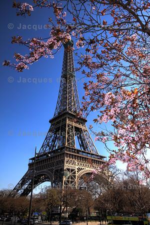 Eiffel Tower, Paris<br /> <br /> France