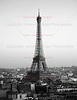 Eiffel Tower <br /> Paris, France <br /> <br /> To see more pictures of France, click on the link below.