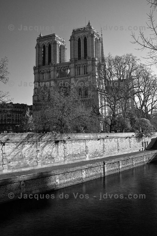 Notre Dame de Paris<br /> <br /> Infra Red shot, Paris - France