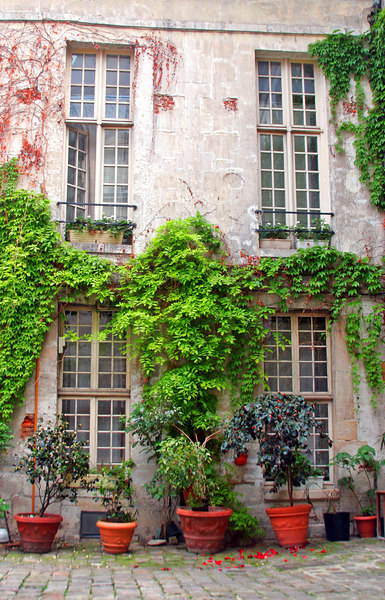 Paris Courtyard #2