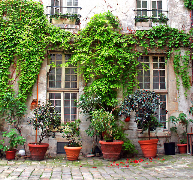 Paris Courtyard #1