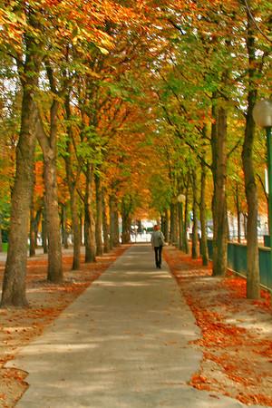 Avenue Gabriel