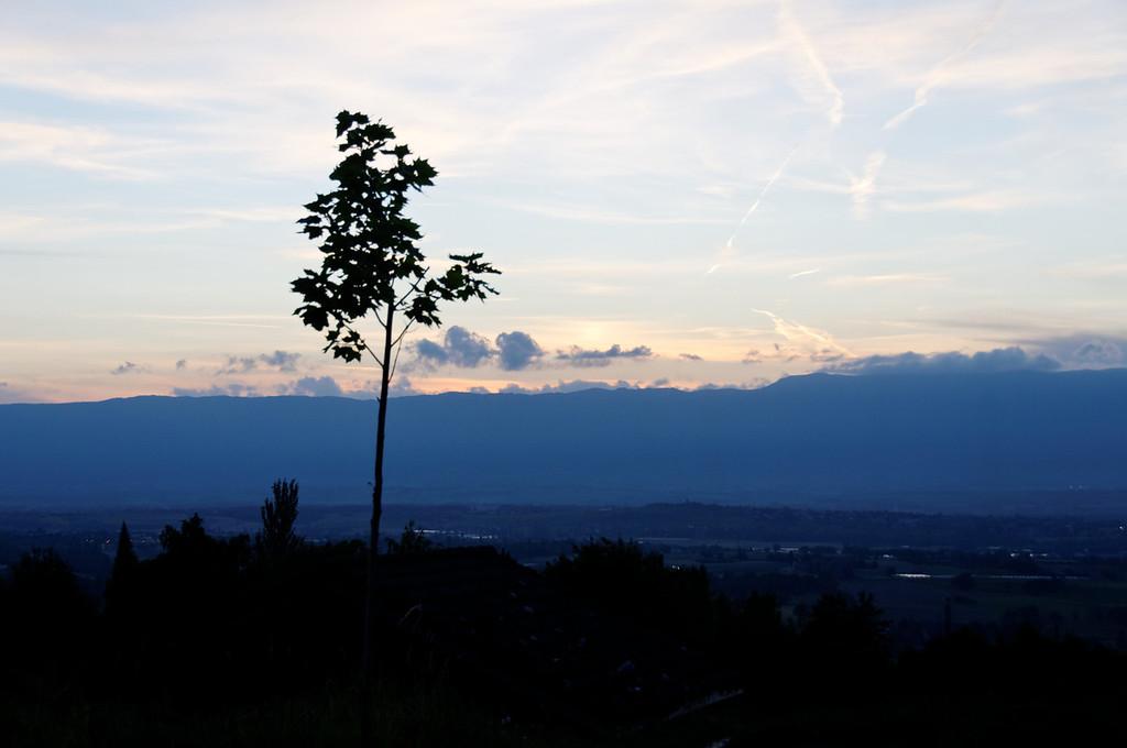 Saleve - France - 4359