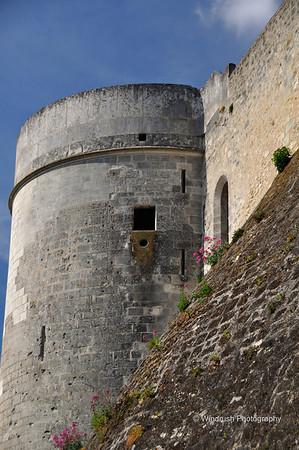 The Loire, France, 2011