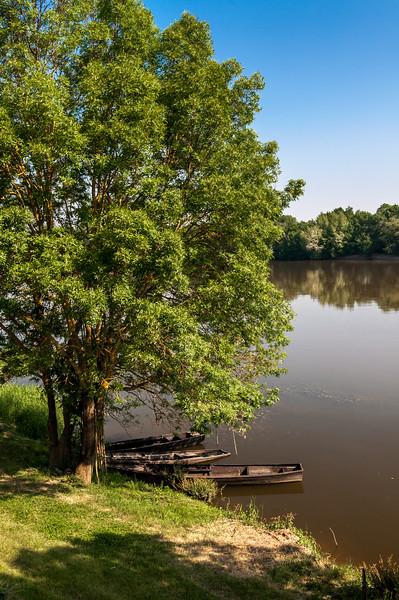 063 Loire near Cunault