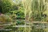 Lily Pond at Monet's garden