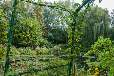 Lily Pond at Monet's garden