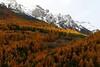 FRA - French Alps near Monginevro - DSC08450