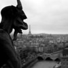 Horned gargoyle on the parapet of the Cathedral of Notre Dame, Paris.