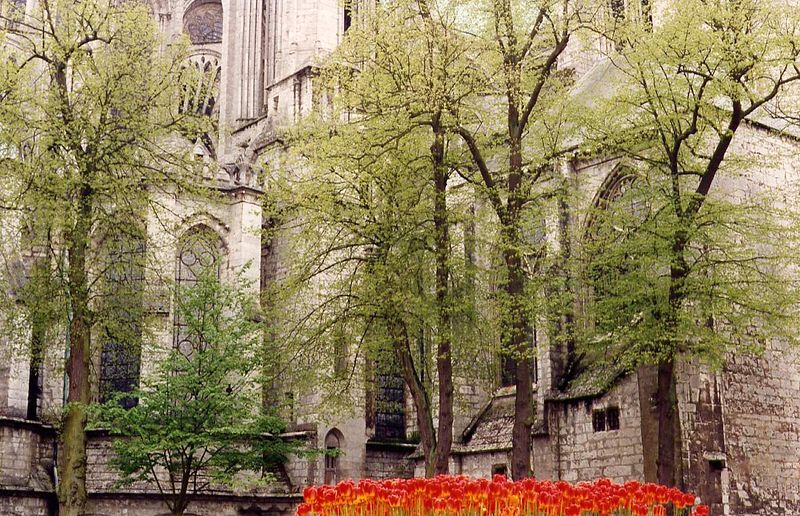 Chartres, 1995