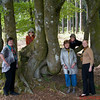 The Silk Painting in France group in the beech forest, Mount Beuvray area.   L to R Gweyneth Bent, Nicky Arden, Carol Gardyne, Bonnie Stewart, Bonnie Wachter